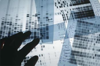 genetic makeup test