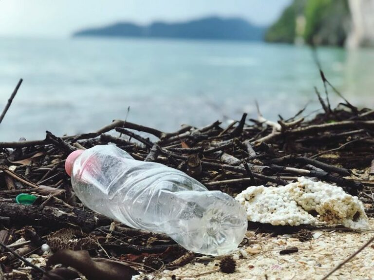 solution plastic pollution